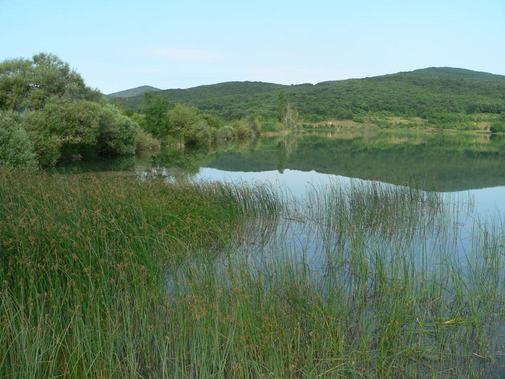 Муловское озеро