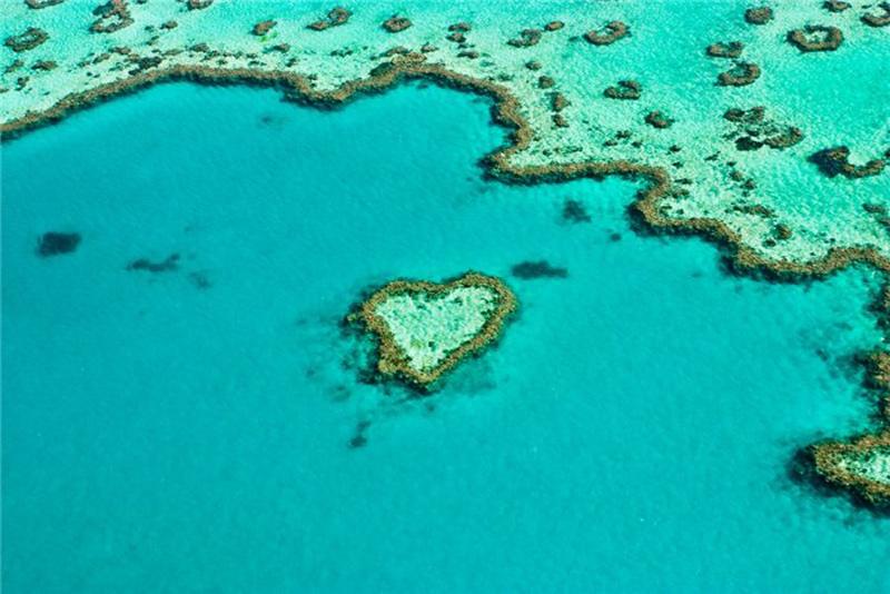 Коралловый Риф в форме сердца
