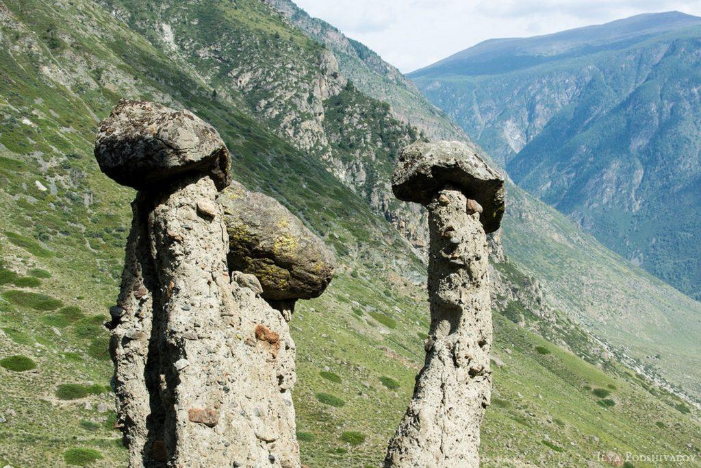 Каменные грибы урочища Аккурум (2)