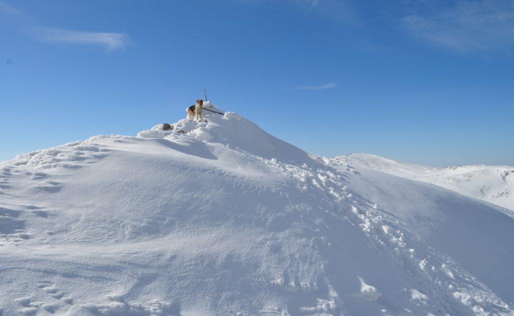 Вершины Чатыр-Дага