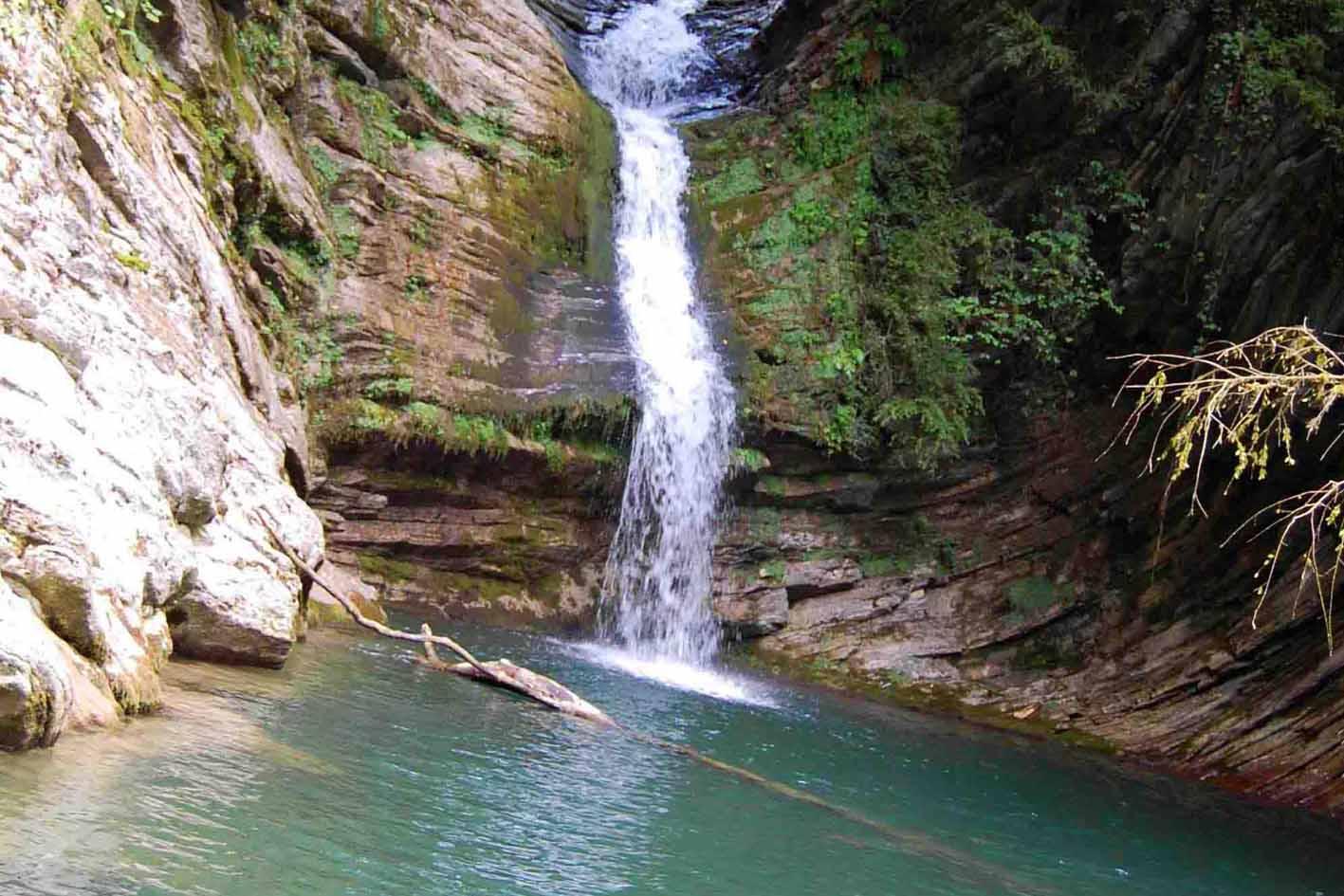 Самшитовый водопад снизу