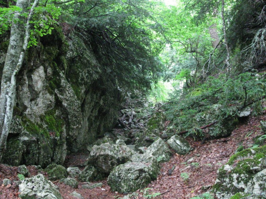 Ущелье из Тиса