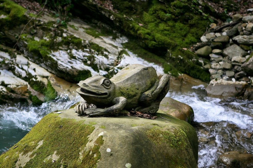 Каньон Прохладный каменная лягушка
