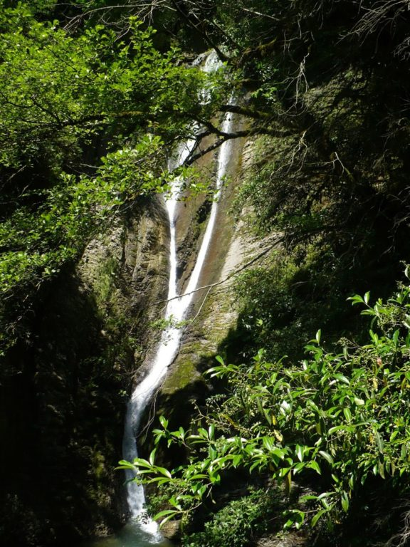 Ореховский водопад летом