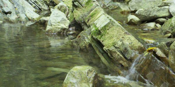 Крабовое ущелье река