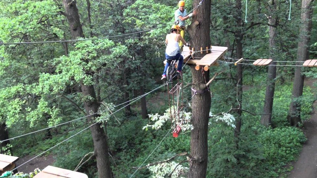 Панда парк активный отдых на деревьях