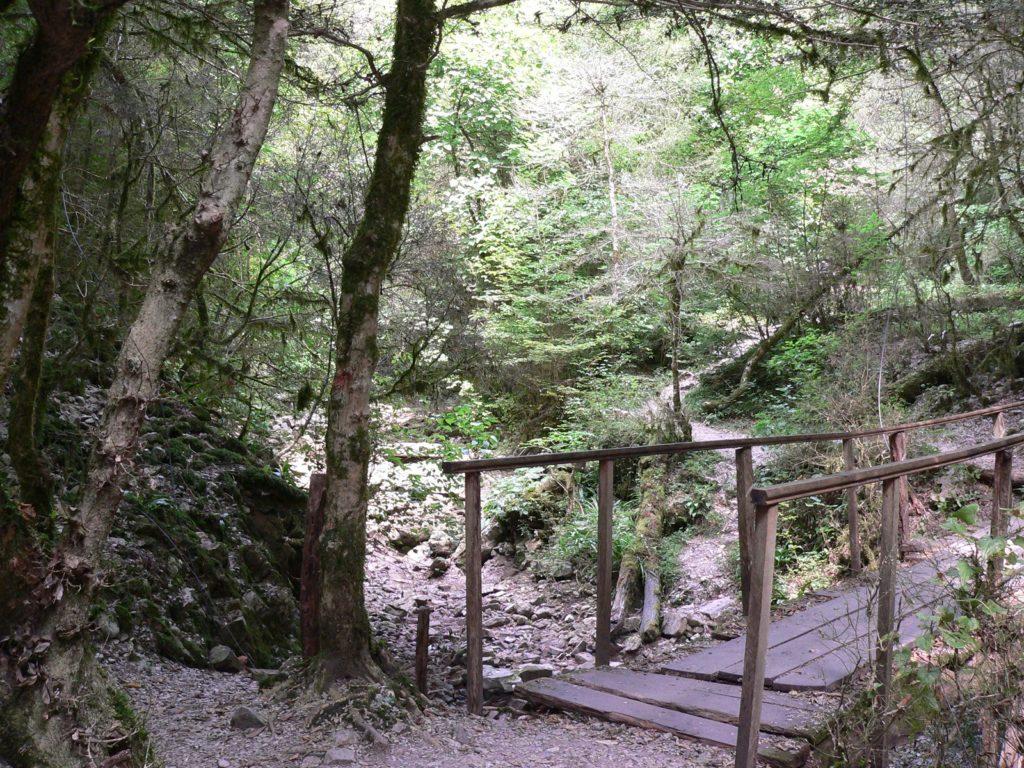Проход к Водопаду Чудо-Красотка