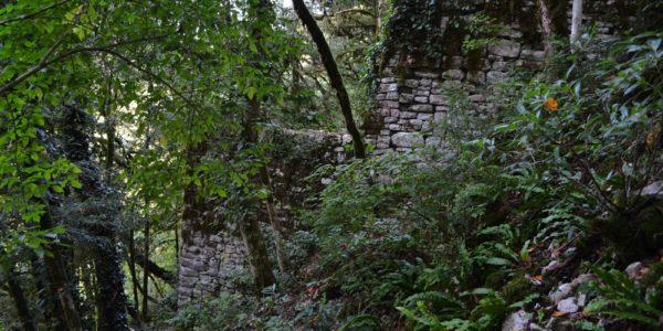 Хостинская крепость станция хоста