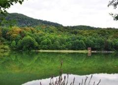 Калиновое озеро шикарный уголок отдыха