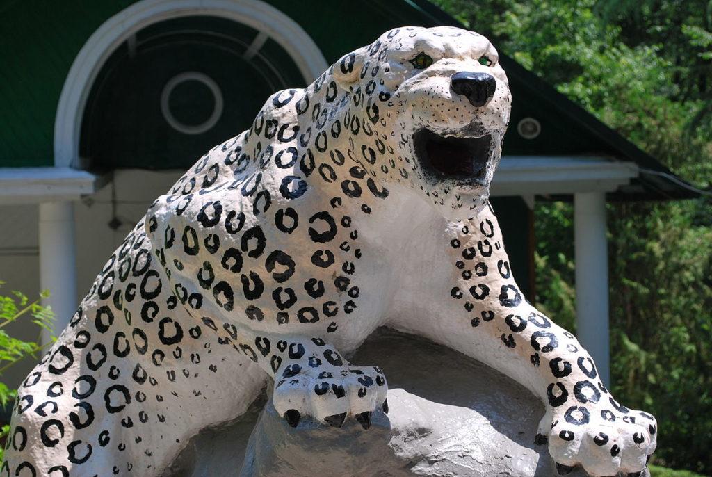 Леопард на входе