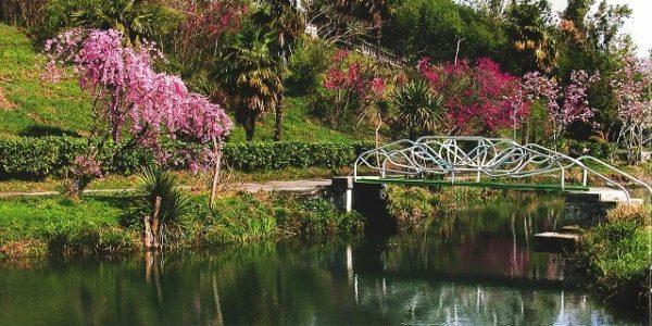 Парк южные культуры пруд