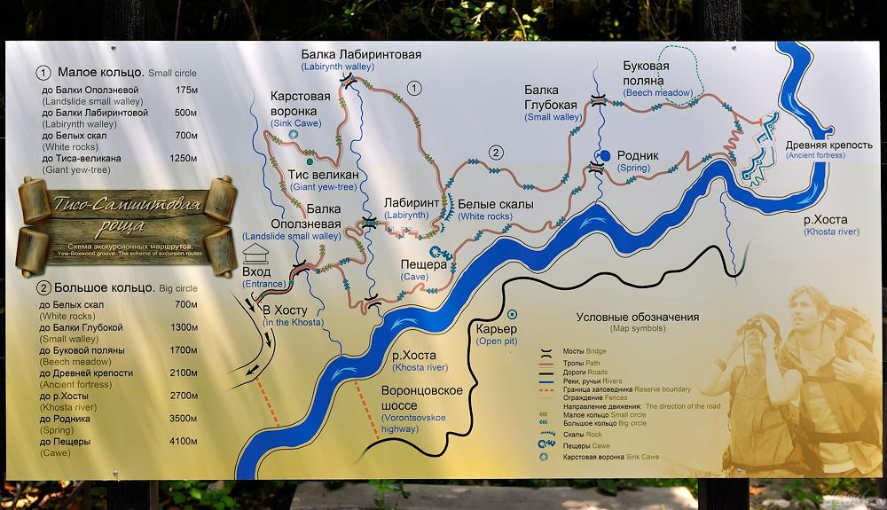 карта тисо самшитовая роща