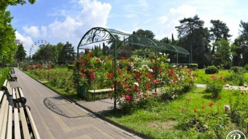 Парк Ривьера розарий
