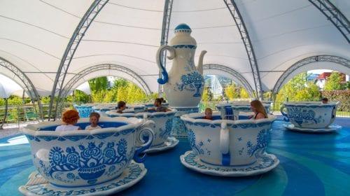 Чайные Чашкисочи парк