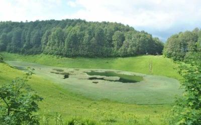 Красивый вид на Хмелёвское озеро